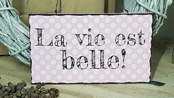 Türschild La vie est belle! Das Leben ist schön! Blechschild 22 x 12,5 cm, Metall