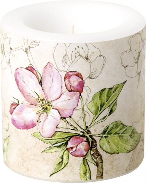IHR Kerze Windlicht Birds Symphony cream, Apfelblüten, Blüten, Frühling, d7cm h7,5cm